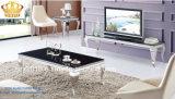 2016 간단한 작풍 현대 스테인리스 텔레비젼 테이블, 거실 가구를 위한 텔레비젼 대
