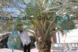 80X100cm, 70X90cm grünes Monoheizfaden HDPE Dattel-Palmen-Ineinander greifen-Nettobeutel für Dattel-Deckel