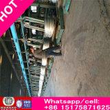 Fil galvanisé barbelé enduit riche de PVC