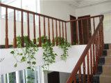 La restauración de color cálido de las maneras antiguas es completamente real Escalera de madera Apoyabrazos