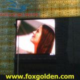 Водоустойчивое P6 рекламируя экран дисплея полного цвета крытый СИД