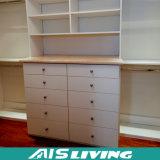 Шкаф шкафа шкафа спальни просто конструкции (AIS-W158)