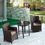 Giardino di vimini esterno della mobilia di Alumiframe del Pe-Rattan che pranza insieme da Chair &Table (Yta020-1&Ytd581