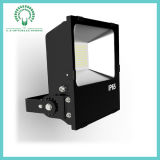 IP65 100W Beautiful High Quality Sliver 또는 Black LED Flood Light