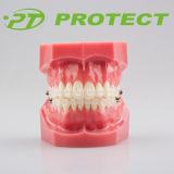 Orthodontisches 0.018/0.022 Sapphire Ceramic Brackets mit CER