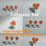 Follistatin 344 Peptide van In het groot Follistatin Supplementen Foll344