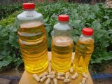 Non-Transgenic Peanut Oil für Wholeasale