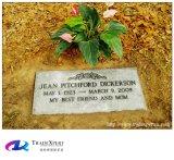 Pietra tombale piana di stile dell'indicatore, granito di pietra della natura che intaglia tomba inclinata