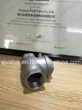 Clapet anti-retour fileté d'oscillation d'acier inoxydable