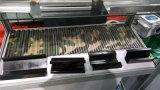Hoja de acero de la impresión de color del camuflaje del pi Pl PPGL