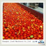 Máquina industrial do molho do tomate