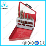 (좌 수교되는) 10 피스 HSS Broken Screw Extractor Set