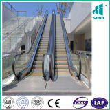 Scala mobile con l'acciaio inossidabile della linea sottile e una cascata delle 800 scale mobili