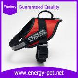 Fournisseurs d'accessoires d'animal familier du harnais en nylon de crabot pour la formation