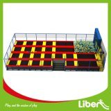 Amusement Parkのための子供Indoor Trampoline