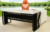 Preiswertes Modern und Iron Metal Type Executive Office Table (SZ-ODT635)