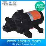 Pompe électrique de C.C de l'eau de pompe de déplacement positif petite