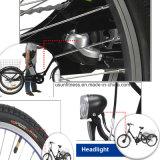 bicicleta 3wheels elétrica para o adulto
