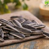 熱い販売の中国の健康食品のヒマワリの種601