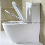 Rinçage en deux pièces en céramique de lavage à grande eau de toilette d'articles de Saintary (ml 831)