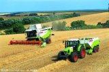 Neue Herbizide für Reis gutes leistungsfähiges Cyhalofop-Butyl