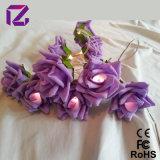 [روس] زهرة ضوء, [لد] إنارة زهرة, زخرفة ضوء