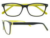Sei colori Unsex il blocco per grafici degli occhiali con la cerniera della molla