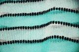 Chandail rayé vert de collecte de femmes avec le bord d'onde
