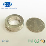 Permanent Stinered Magnetic Material NdFeB Ring Magnet for Motor (DRM-017)
