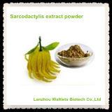 Polvo natural del extracto de Fructus Citri Sarcodactylis de la alta calidad