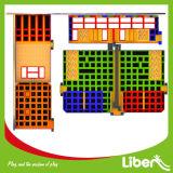 Liben 성인과 아이들을%s 상업적인 실내 Trampoline 법원