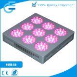 Large spectre en gros 300W DEL Grow Light