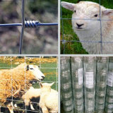 牛Farm FenceかField Fenceか牧草地Fence