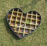 사랑하고 있는 심혼 모양 초콜렛 포장 상자