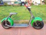 Motocicleta elétrica da roda grande do pneu dois para a venda