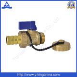 Válvula de cobre amarillo vendedora caliente de la cerveza del alesaje del estándar (YD-3011)