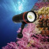 1inch 공을%s 가진 Undrewater 100m Archon 잠수 빛 최대 2600 루멘
