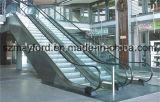 Эскалатор лифта пассажира для железнодорожного вокзала