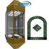 Ascenseur panoramique économique de passager avec le mur en verre
