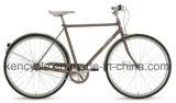 una bici classica delle 7 velocità di nesso 700c ragazze di inter con la bici olandese della città della bici di Oma del cestino