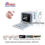 Scanner equino di ultrasuono dei prodotti 4D Doppler di Veterianry