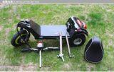 편리한 시트를 가진 350W 전기 세발자전거