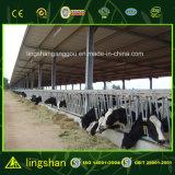 ISOは軽い鋼鉄低価格牛農場の小屋を組立て式に作った