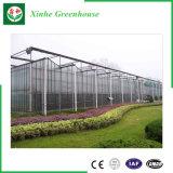격리해서 또는 꽃을%s 층 단단하게 하는 또는 지 유리제 온실을 또는 야채 또는 과일 또는 설치하거나 농장 또는 양식 또는 가축 Breeding 또는 생태학적인 대중음식점 골라내십시오