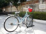 خارجيّ شقّ مكان دفع درّاجة تخزين حلول درّاجة إطار