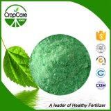 Fertilizante soluble en agua 19-9-19 NPK del 100%