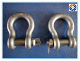 Drop Forged Parts의 삭구 Hardware Screw Pin D Shackle