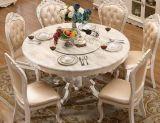 Hölzerner Abendessen-Stuhl, Europa-Art-Stuhl, französischer Art-Stuhl (619)