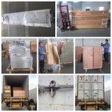 Horizontale Verpackungsmaschine - Wischer-Verpackungsmaschine-Stützblech-Beutel naßmachen