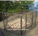 Клетка собаки